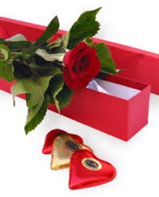aingle-red-rose-with-chocolate